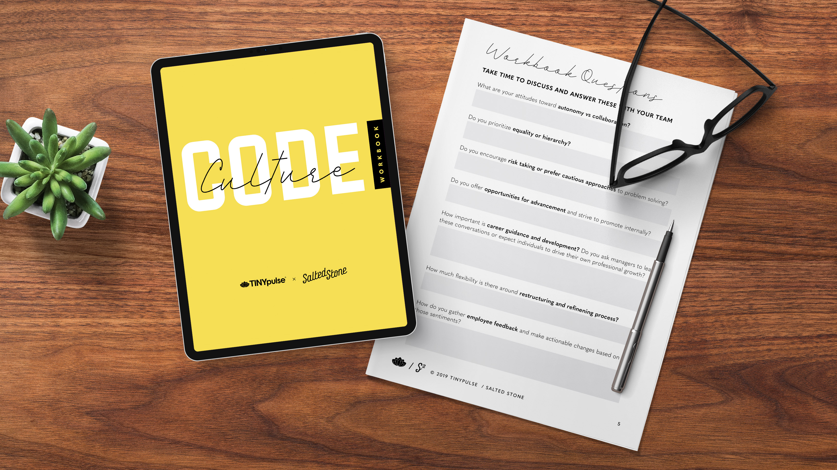 The Culture Code Workbook